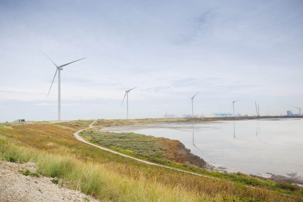 Windpark Slufterdam in aanbouw